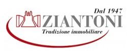 Agenzia Immobiliare Ziantoni