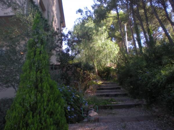 garden stairways