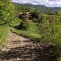 Peaceful valleys