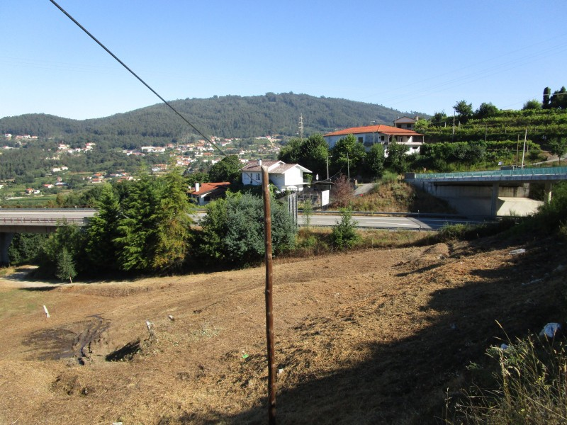 A view from the farm