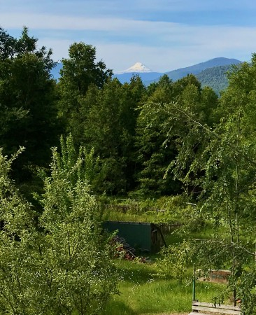 View to the greenhouse, garden, and Llaima volcano
