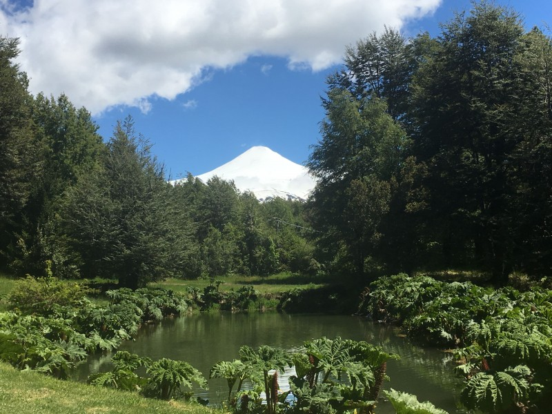 The view of Villarrica Volcano from the Clubhouse (Quincho)