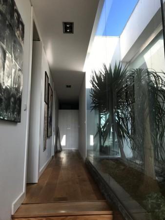 Interior Garden II