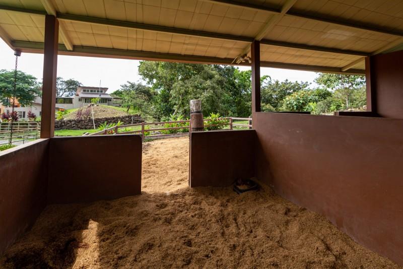 2 stalls, soft bedding