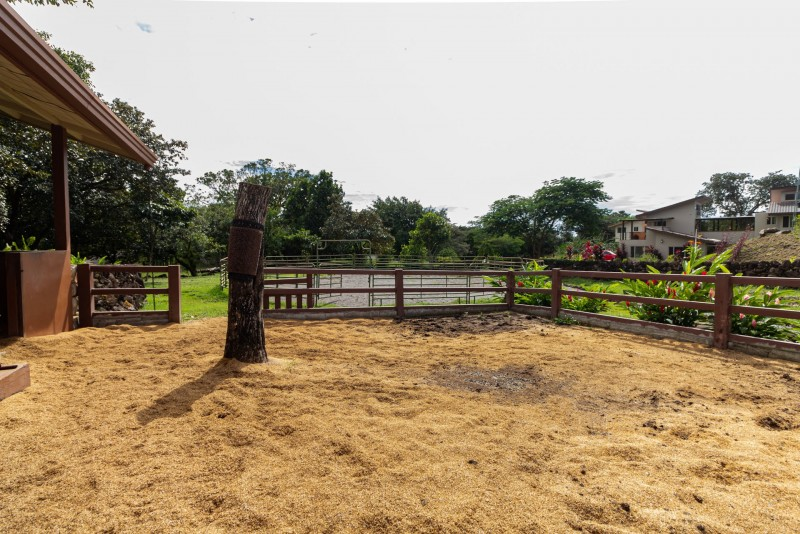 Fenced corral, soft footing
