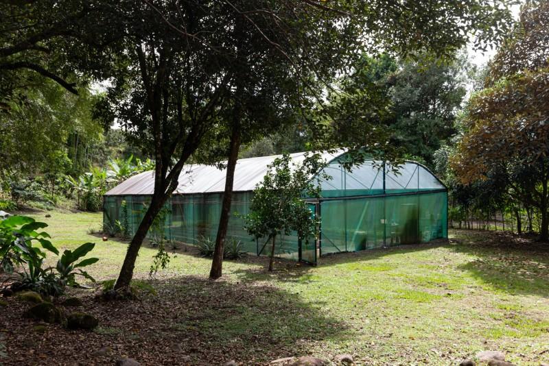 300 sq. meter green house