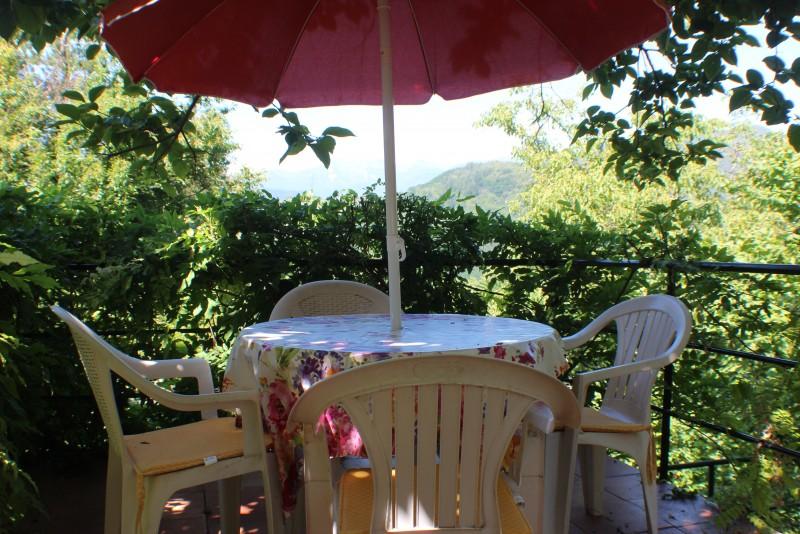 Garden lower terrace
