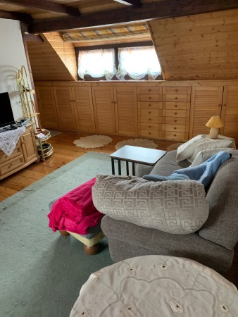 Seconfd Bedroom/Living Room